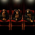 The Three Wise Monkeys by Katseyes