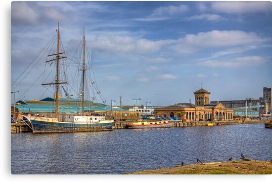 Prince Of Wales Docks by Lynne Morris