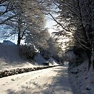 Tracks in snow - Moorhaven Main Drive  by moor2sea