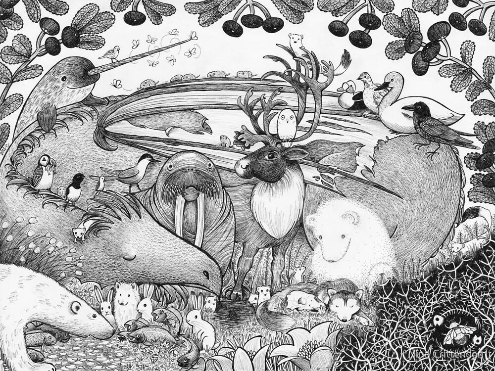 Arctic Circle by Nina Crittenden
