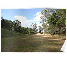 Grassy paddock Poster