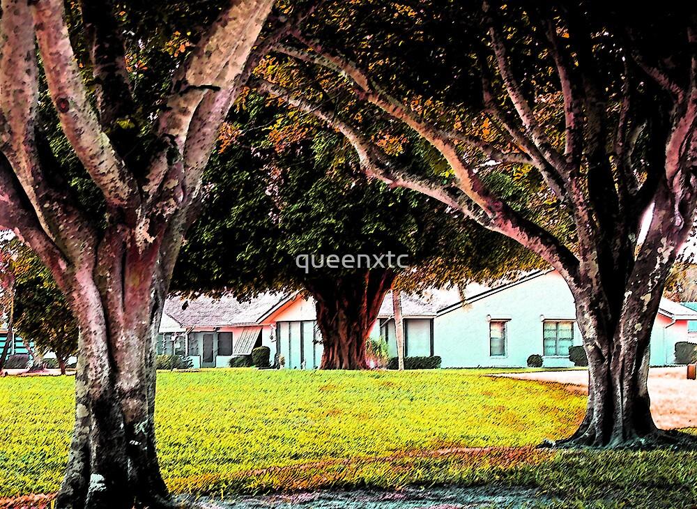 Whiskey Creek Neighborhood. by queenxtc