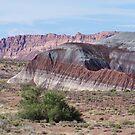 Painted Desert by loislame