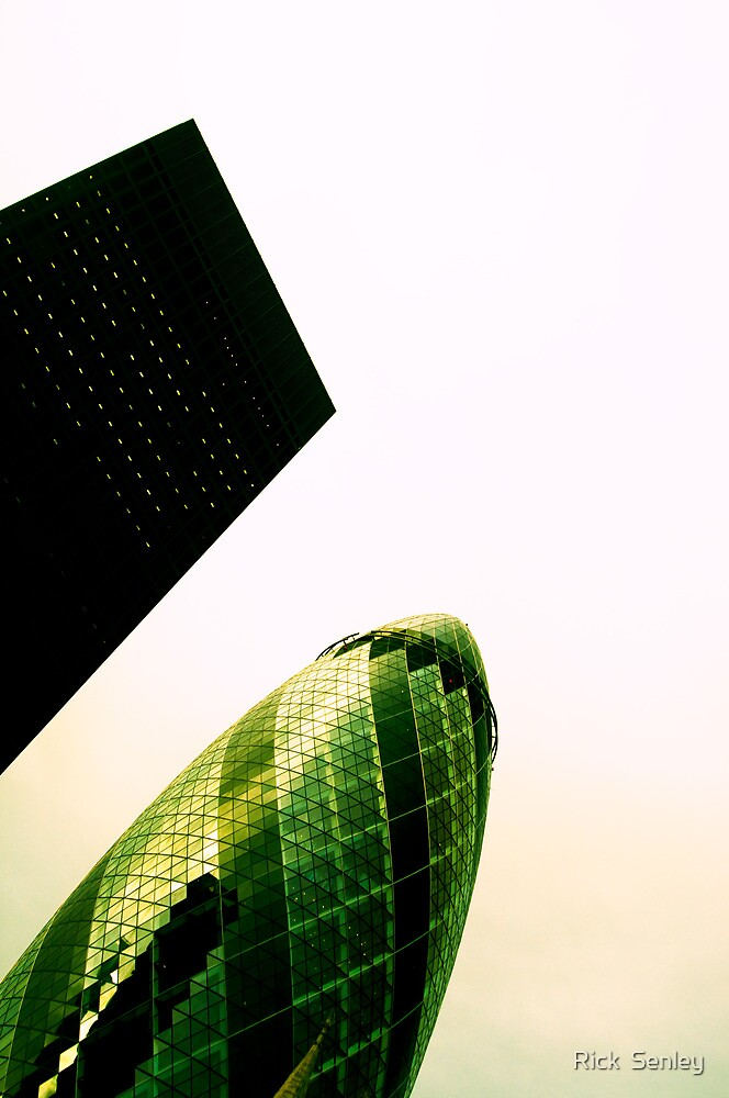 The Gherkin, London by Rick Senley