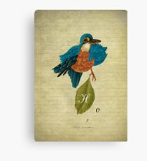 Indigo kingfisher's hope Canvas Print