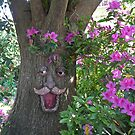 Old Man Tree by Margaret  Hyde