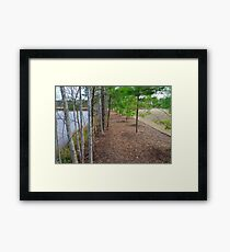 Fancy Cary Suburb landscape Framed Print