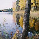 Östen om høsten. by prema