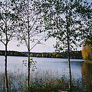 Westra Wermland. by prema