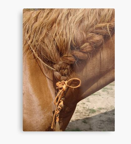 Braid Metal Print
