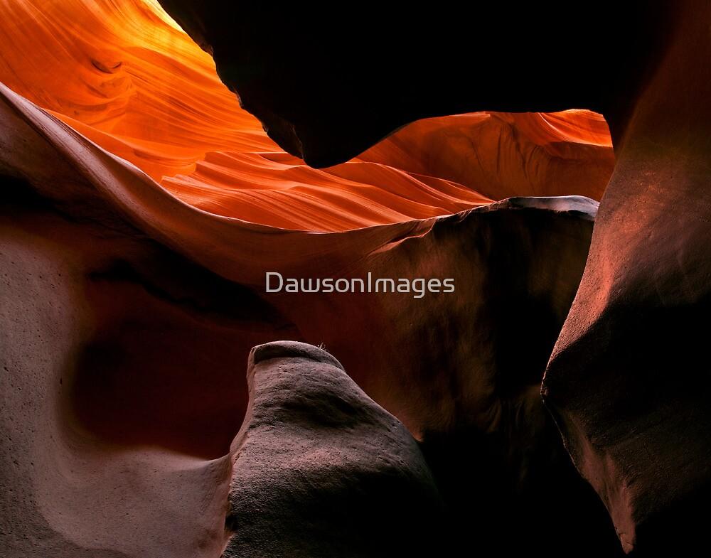 Desert Thumb by DawsonImages