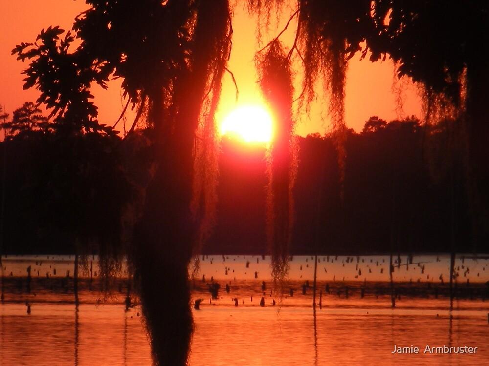 Louisiana Sunset #1 by Jamie  Armbruster