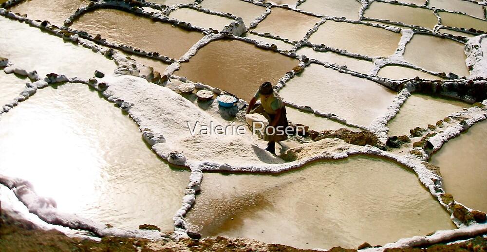 Las Salinas de Mara, Peru IV by Valerie Rosen