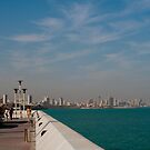 View of the city, Kuwait by NicoleBPhotos