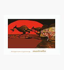 Kangaroos in Passing Photographic Print