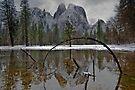 Reflecting Pond by photosbyflood