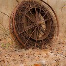 Wheel Revisited by Scott  Hafer