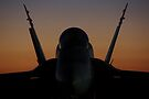 Sunday Sunrise F/A-18 #44 by AlMiller