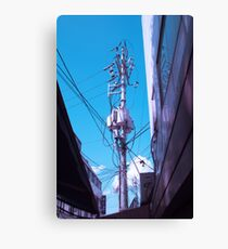Telephone Polls Canvas Print