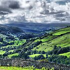 View of Swaledale by Sandra Cockayne