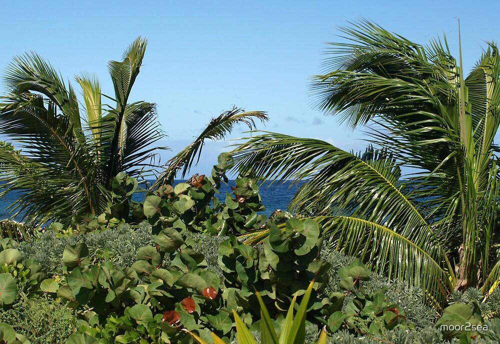 "Shinny Caribbean: Sandy Island, Carriacou, Grenadines"" By"