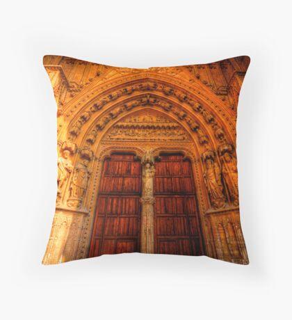 Tradesman's Entrance Throw Pillow
