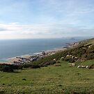 Views from coastal path - near Yealm Estuary by moor2sea