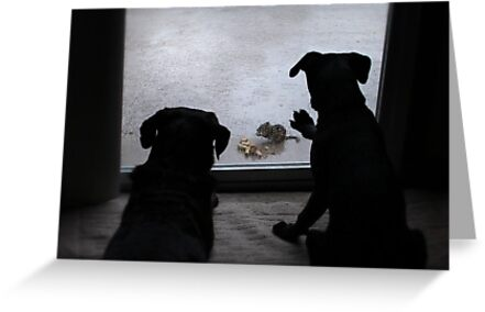 It was too wet to play! by Lori Deiter