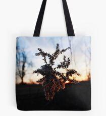 barbed sunset Tote Bag