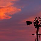Old Country Farm Windmill with a Sunset  by Bo Insogna