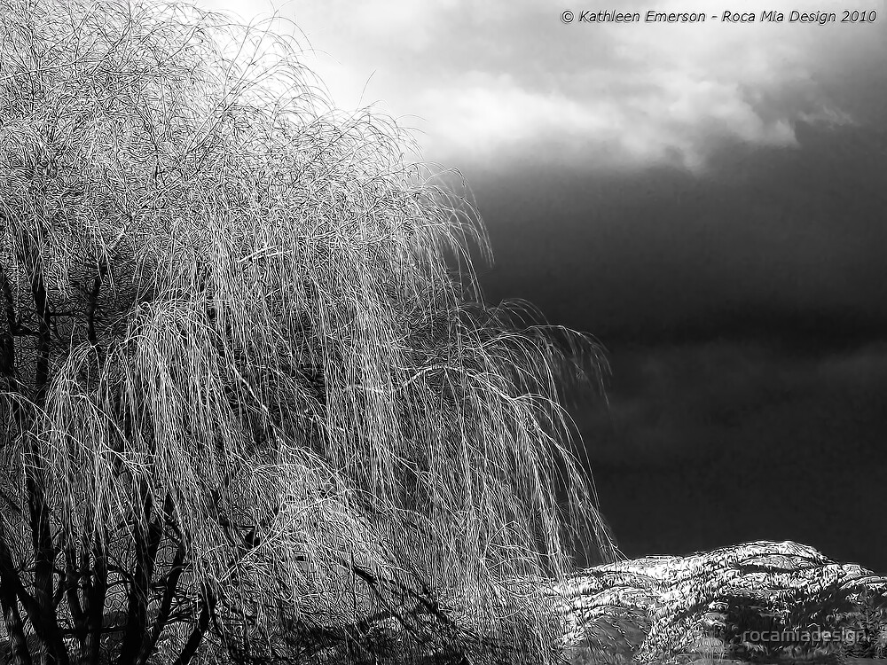 Winter's Dirge by rocamiadesign