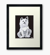Furry Pet Framed Print