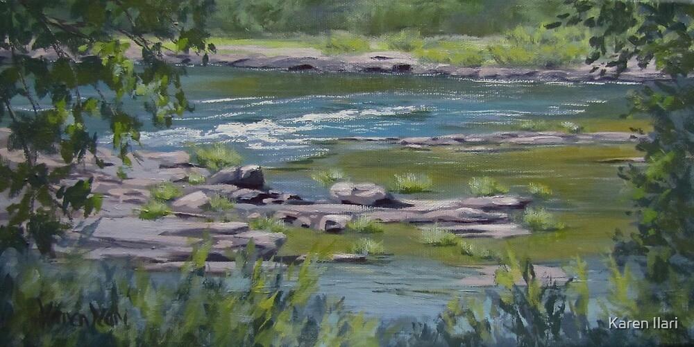 Along the River by Karen Ilari