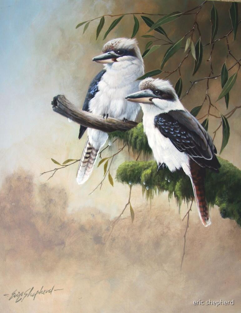 """Premise Indicator Words: """"Kookaburras"""" By Eric Shepherd"""