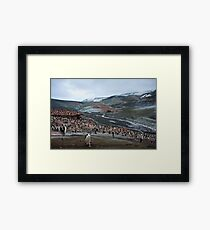 Chinstrap Penguin Colony Deception Island Framed Print