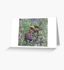WO ~ PARROT ~ Green Rosella by David Irwin 061119 Greeting Card