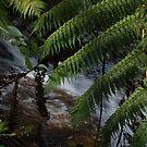 As it flows by Deborah Clearwater