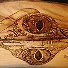 Eye of a Fresh Water Croc by aussiebushstick