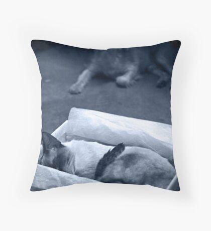 elegy for a friend Throw Pillow