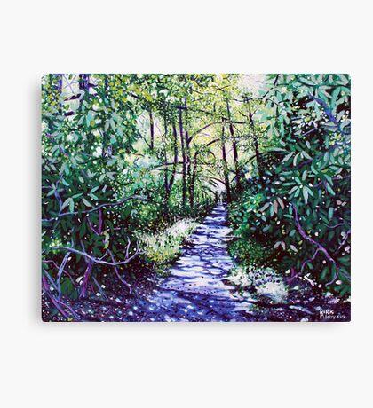 'The Glen Burney Trail' (Blowing Rock, NC) Canvas Print