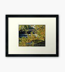 Valley Falls Framed Print