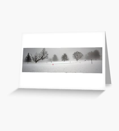 Trees In Snow and Fog - Bridgton Highlands Greeting Card