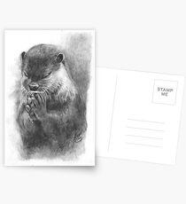 Meditierender Otter (schwarz-weiß) Postkarten
