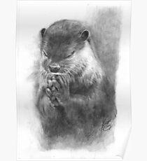 Meditierender Otter (schwarz-weiß) Poster