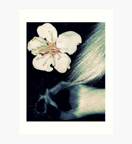 03-07-11:  Allergic Canine Art Print