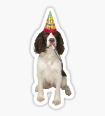 English Springer Spaniel Birthday Sticker