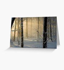 Winter Light Rays - Ottawa, Canada. Greeting Card