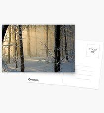 Winter Light Rays - Ottawa, Canada. Postcards