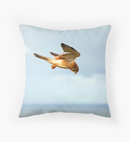 Byron Bay Kestrel Throw Pillow