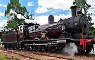 Thirlmere`s Festival of Steam by Terry Everson